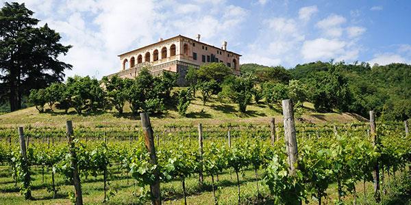 location service tecnosound villa vescovi